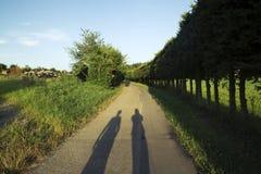 2 человеческих тени на дороге с которой загородка сделала из елей Стоковое Изображение