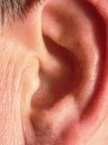 Человеческое тело ухо Стоковое Изображение RF