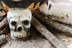 Человеческое skulll в виске Стоковое Фото