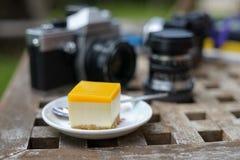 Чизкейк манго Стоковые Фотографии RF