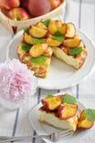 Чизкейк персика Стоковые Изображения RF