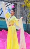 Чикаго, Иллинойс - США - 24-ое ноября 2016: Китаец Falun Dafa Стоковое Фото