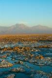 Чили Стоковое Фото