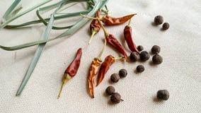 Чили Allspice красные и трава лимона на белой предпосылке Стоковые Фото