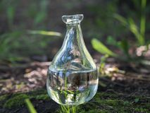 Чистая вода в стеклянной бутылке Стоковые Фотографии RF
