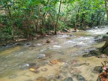 Чистая вода и прозрачное река Стоковая Фотография