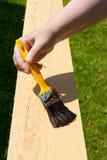 чистить щеткой стоковое фото rf
