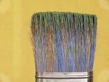 чистит цветастую краску щеткой Стоковая Фотография RF