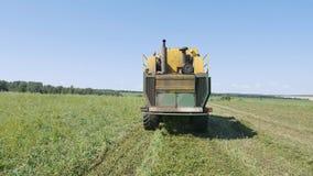 Чистка горохов, зернокомбайн жать горохи PLOEGER EPD 530 видеоматериал