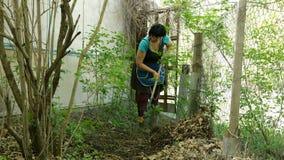 Чистка сада весны Садовник сгребая с листьями грабл в задворк сток-видео