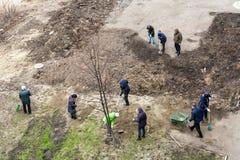 Чистка территории в мёртвом сезоне Стоковое Изображение