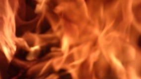 Чистое яркое пламя - естественная предпосылка сток-видео