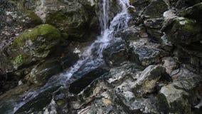 Чисто водопад свежей воды видеоматериал