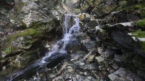 Чисто водопад свежей воды акции видеоматериалы