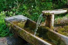 Питье от чисто воды Стоковое Изображение RF