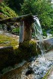 Питье от чисто воды Стоковые Изображения RF