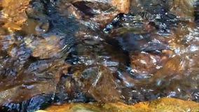 Чисто ход речной воды сток-видео