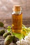 Чисто эфирное масло Стоковая Фотография