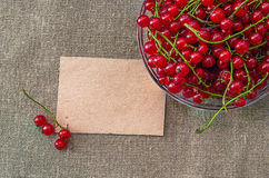 Чистый лист бумаги и зеленые горохи в шаре Стоковая Фотография