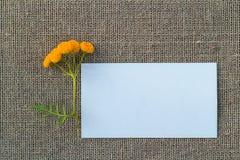 Чистый лист бумаги и цветок на увольнении Стоковая Фотография