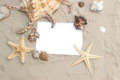 Чистый лист бумаги на морских звёздах лета песка пляжа Стоковое фото RF