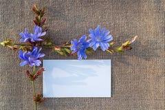 Чистый лист бумаги на увольнении Стоковые Фотографии RF