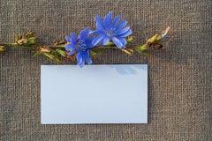Чистый лист бумаги на увольнении Стоковое Фото