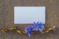 Чистый лист бумаги на увольнении Стоковая Фотография RF