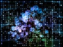 Численная решетка цифров Стоковая Фотография