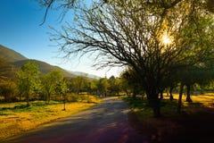 чилийский ландшафт стоковая фотография