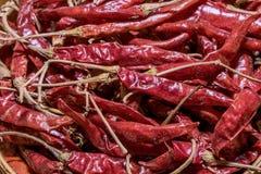 чили высушили горячий красный цвет Стоковое Изображение
