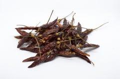 Чили, перец, белизна, красный цвет, специи, тайские, чили, предпосылка, еда, чили Стоковая Фотография RF
