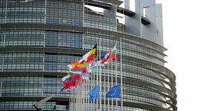 Члены Европейского союза сигнализируют развевать перед Европейским парламентом после того как Париж Bataclan атакует замедленное  сток-видео