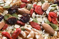 Чокнутые и высушенные плодоовощи на ореховой бахлаве стоковая фотография rf