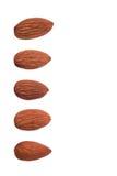 5 чокнутых миндалин для украшения на белой предпосылке Стоковое фото RF
