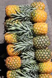 Чолумбийские ананасы Стоковое фото RF