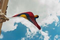 чолумбийский флаг Стоковое Изображение