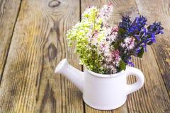 Чонсервная банка белой вазы моча с цветками на деревянном столе Стоковое Изображение RF