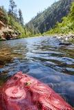 Чонсервные банкы охлаждая в холодной воде реки горы стоковое фото rf