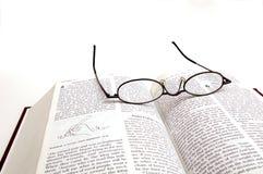 чтение библии Стоковая Фотография RF