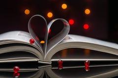 Чтение влюбленности Стоковые Изображения RF