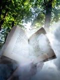 Чтение книги под деревьями стоковое изображение rf