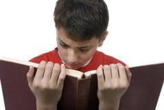 чтение мальчика стоковые изображения rf