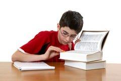 чтение мальчика Стоковое Изображение RF