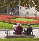 чтение пар пожилое Стоковые Изображения