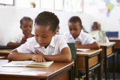 Чтение школьницы на ее столе в уроке начальной школы стоковые фото