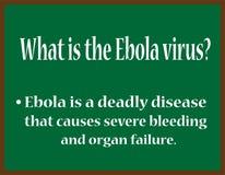 Что ирус Эбола? Стоковые Фото