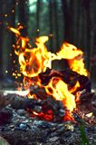 Что огонь выглядеть как? Стоковая Фотография RF