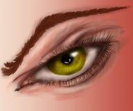 Чувства глаза тела Стоковые Изображения