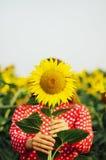 Чувственный портрет девушки в поле солнцецвета Портрет женщины в поле солнцецвета Стоковая Фотография RF